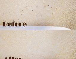 【壁紙のカビの落とし方】軽度ならカビキラーで落とせました