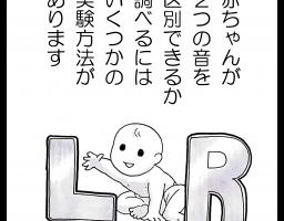 私たちは赤ちゃんの頃はLとRの聞き分けができていた―言語習得とは切り捨てることでもある