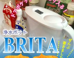 浄水ポット「ブリタ」が一人暮らしの浄水器にはおすすめ!カートリッジ交換式でリットルあたり4.2円!